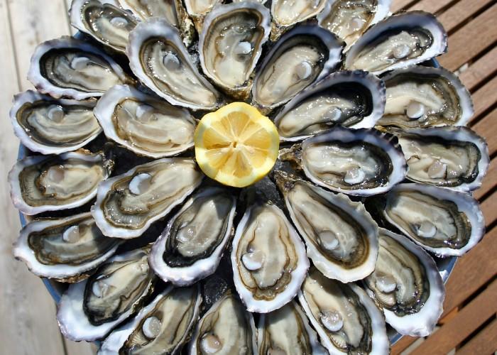 degustation huitres en mer